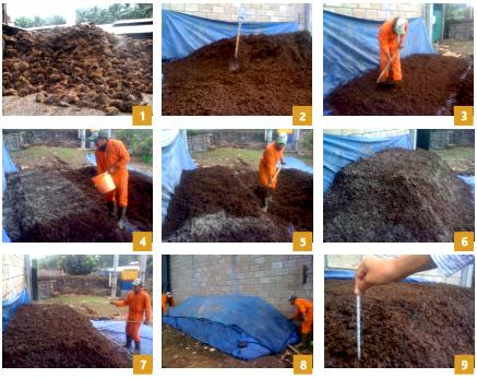 rizkiagro.com | Supplier Produk Pupuk dan Pestisida Organik Perkebunan dan Pertanian